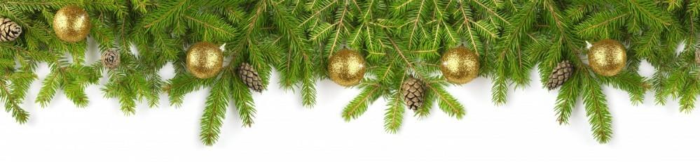 Tannenzweige - Weihnachten - Banner